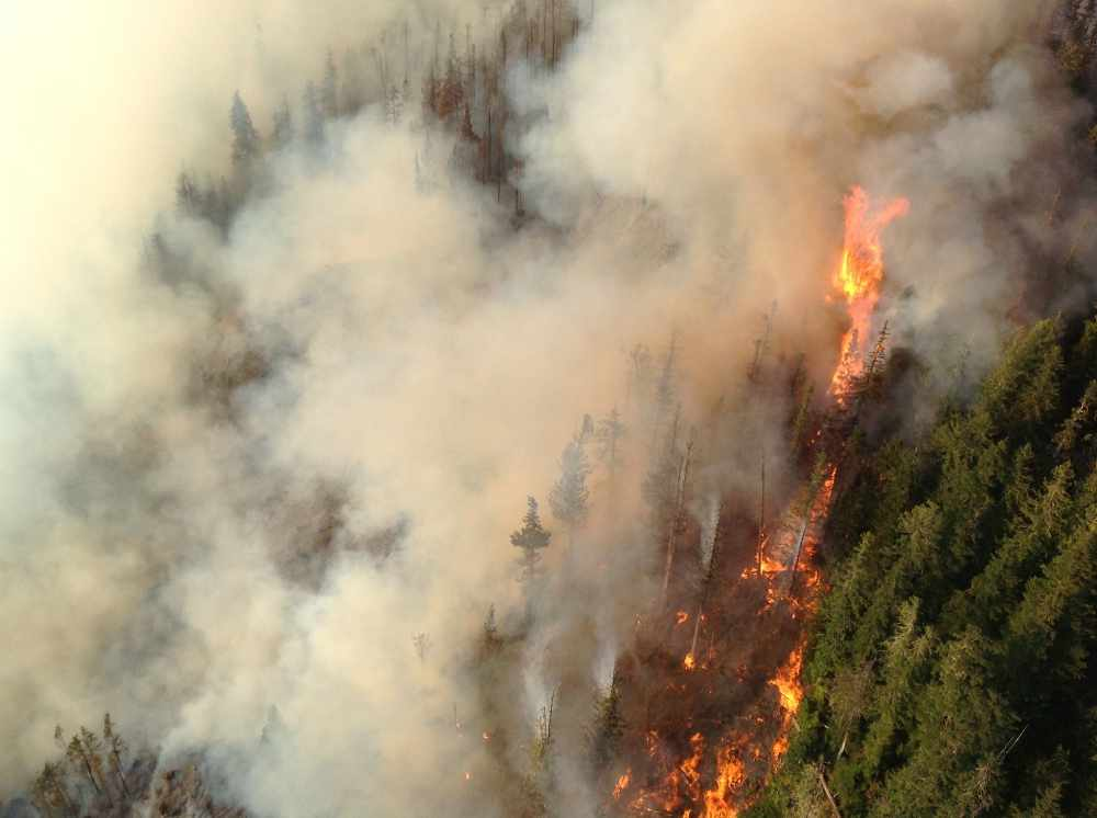 Seven new wildfires sparked across East Kootenay - My East