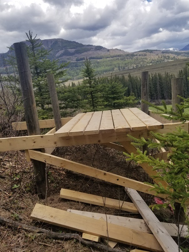 Sparwood searching for builders of unauthorized trail and structure